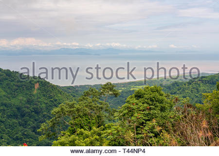 Tropical rainforest in Puntarenas province of Costa Rica - Stock Image