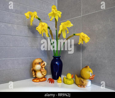 Bathroom still life. Dying daffodils in blue vase, rubber ducks in a row, Small red plastic elephant - Stock Image