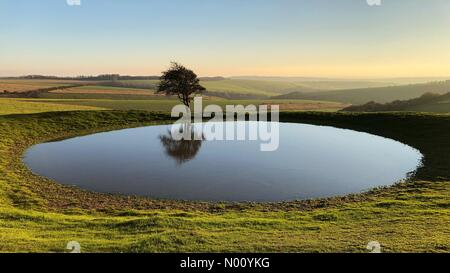 Pond and tree in glorious autumn weather on South Downs Way west of Ditchling Beacon in West Sussex. Credit: Johan Siebke/StockimoNews/Alamy Live News - Stock Image