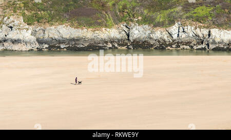 A panoramic view of a distant dog walker and a dog walking on Crantock Beach in Newquay in Cornwall. - Stock Image