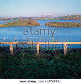 Sheepwash Urban Park developed on land formerly used for tipping industrial waste, Sandwell, West Midlands, UK, 1992 - Stock Image