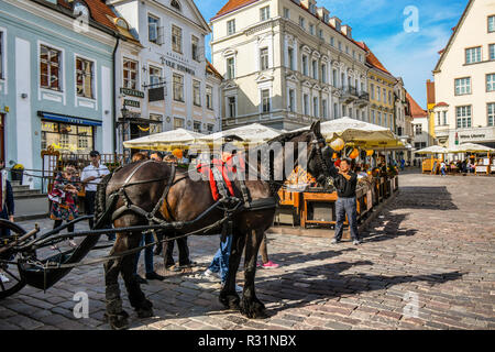 Tourists surround a work horse pulling a carriage for hire in the historic old town center of the medieval Baltic city of Tallinn, Estonia. - Stock Image