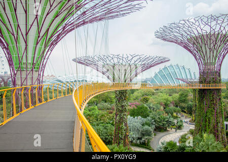 Supertree Grove at Gardens by the Bay - Stock Image