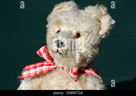 Teddy bear dreaming in the sun - Stock Image