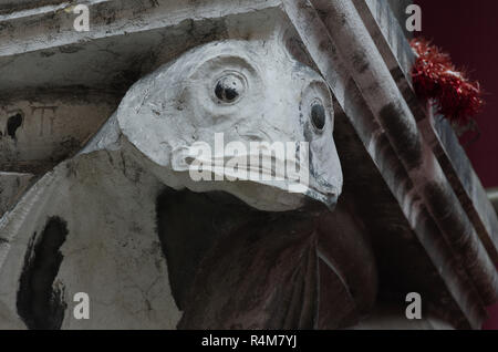 Fish Volute at the mercato de relaito in Venice - Stock Image