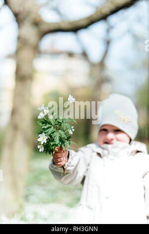 Girl holding anemones - Stock Image