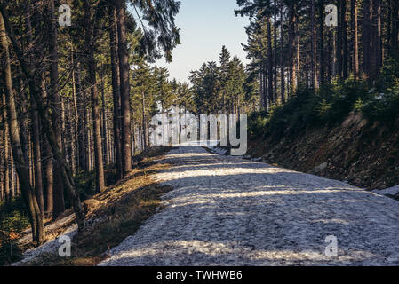 Road on a slope of Kozia Rownia mountain in Landscape Park of Gory Sowie (Owl Mountains) mountain range in Central Sudetes, Poland - Stock Image