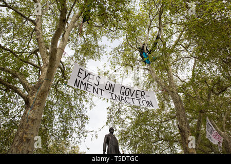 London, UK. 23rd April 2019. Climate change activists from Extinction Rebellion lie in hammocks strung between the upper branches of tall trees high a - Stock Image
