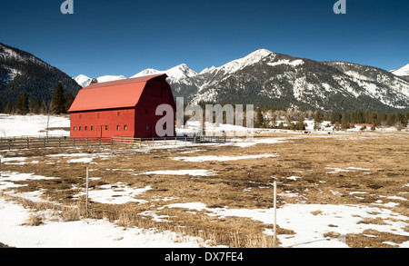 A ranch farm homestead looks cold and bright during winter frost - Stock Image