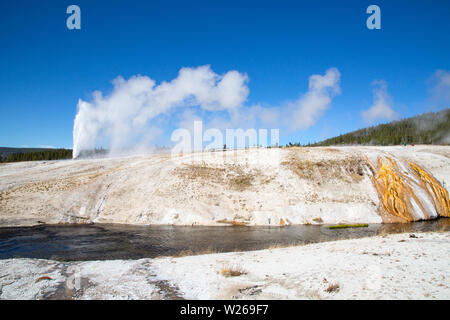 Cone Geyser eruption in the Yellowstone national park, USA - Stock Image