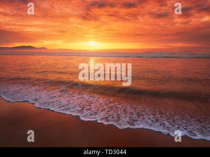 beautiful red sunset on beach with a wave on the shore - Stock Image