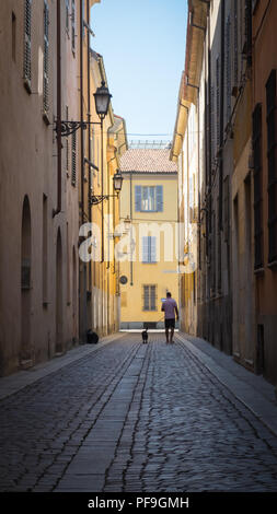 One man and his dog, walking through the sunny cobbled city streets of Piacenza, Italy, Europe. - Stock Image