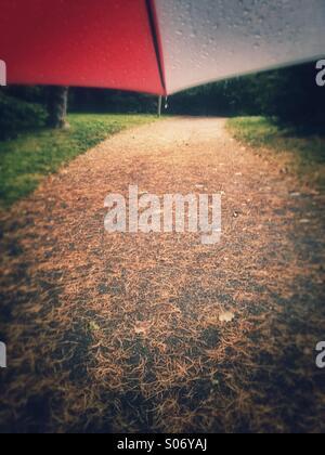 Walking under umbrella on footpath strewn with fallen pine needles. - Stock Image