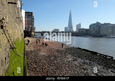 View of River Thames at low tide, Shard building, people mudlarking near Queenhithe and algae covered wall in London EC4 England UK  KATHY DEWITT - Stock Image