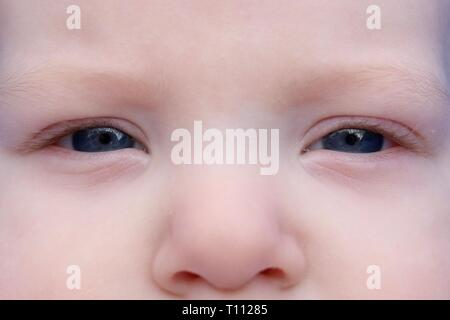 Macro shot of the serious blue eyes of a young baby - Stock Image