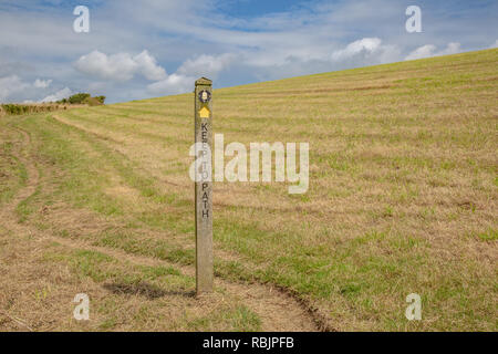 A footpath on the south coast of Cornwall in the summer - Stock Image