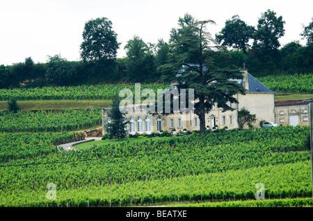 chateau fonplegade saint emilion bordeaux france - Stock Image