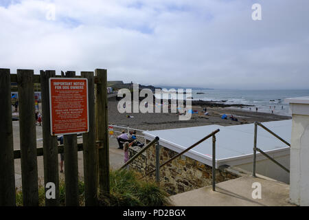 Bude, Cornwall, UK. A sign warn beach goers against a dog exclusion order for Crooklets beach in Cornwall - Stock Image