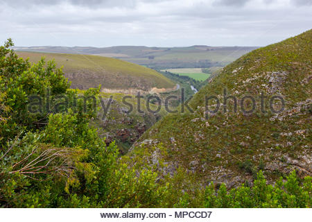 The R324 road snakes through the hills south of Barrydale, South Africa - Stock Image