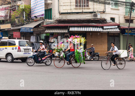 A Vietnamese woman riding her bicycle on the road carrying flowers, Hanoi, Vietnam - Stock Image