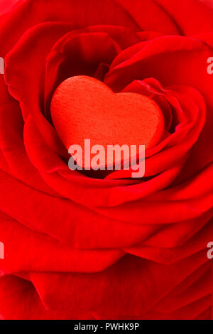 Red heart in a rose flower. Romantic background texture for a Valentine's or Wedding day greetings card with text space. - Stock Image
