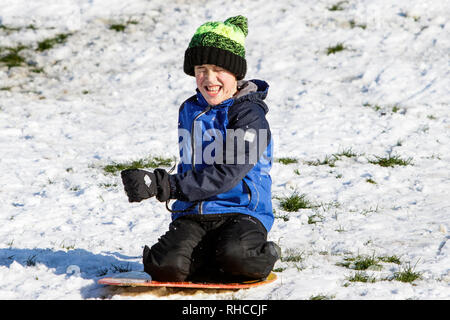Chippenham, Wiltshire, UK. 2nd February, 2019. A boy enjoying the snow before it thaws is pictured as he slides down a hill in a local park in Chippenham. Credit: Lynchpics/Alamy Live News - Stock Image