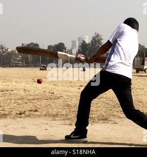 Cricket in the park - Stock Image