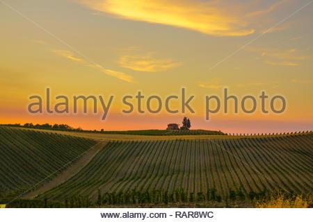 Castellina in Chianti, Tuscany - Stock Image
