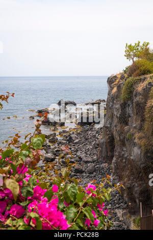 Italy Sicily Catania Aci Castello cliff rocks rocky beach sea water bright pink red bougainvillea netting tree bushes seaside Ionean Sea sailing boat - Stock Image