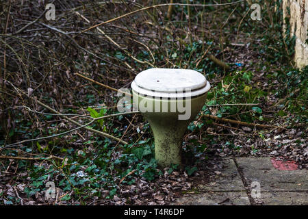 An abandoned avacado green toilet bowl has been randomly dumped outside in undergrowth - Stock Image