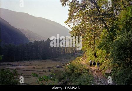 Trekkers descending track through trees and fields from Syauli Bazar to Naya Pul Annapurna circuit Nepal Himalayas - Stock Image