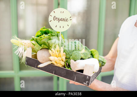 Holding box with fresh organic vegetables on the green background - Stock Image