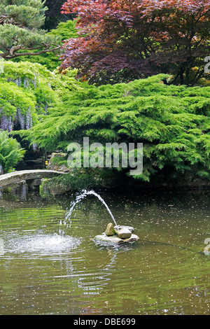 Water Feature, The Japanese Garden, Cottered, Hertfordshire. - Stock Image