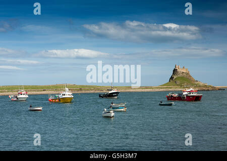 UK, England Northumberland, Holy Island, boats in Harbour with Lindisfarne Castle - Stock Image