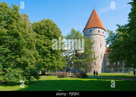 Tallinn park garden, view across the city park and gardens towards one of nine towers linked by the Lower Town Wall in the centre of Tallinn, Estonia. - Stock Image