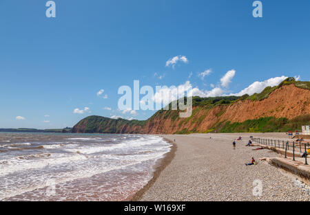 View along the shingle beach shore towards High Peak looking west at Sidmouth, a pleasant south coast seaside town in Devon, south-west England - Stock Image