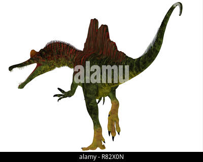 Ichthyovenator Dinosaur Tail - Ichthyovenator was a carnivorous theropod dinosaur that lived in Laos, Asia during the Cretaceous Period. - Stock Image