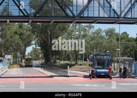 Two New South Wales buses passing under a new pedestrian overpass at the Riley T-Way bus stop in the Sydney suburb of Kellyville, NSW Australia - Stock Image
