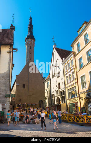 Tallinn Old City, view in summer of Tallinn Town Hall Tower sited at the end of Vanaturu kael in the center of the city's Old Town quarter, Estonia. - Stock Image