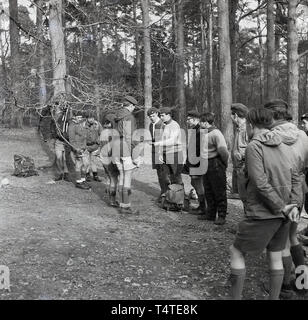 1960s, historical, checking the compass, scouts with leaders in the forest at an outdoor activity course, England, UK. - Stock Image