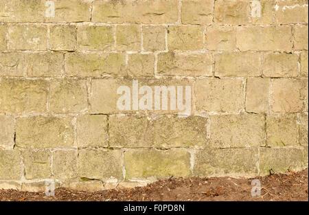 Limestone block wall - Stock Image