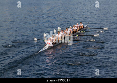 Copenhagen, Denmark, 13th October, 2018. A combined Danish junior team from more rowing clubs in Roskilde Rowing Club colours in the eight race in the 6,5 km international regatta, the Copenhagen Harbour Race, from Langebro in the inner harbour to the lock gate system in the South Harbour and back. Credit: Niels Quist/Alamy Live News - Stock Image