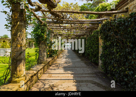 A trellis walkway leading to Hever Lake, Hever Castle & Gardens, Hever, Edenbridge, Kent, England, United Kingdom - Stock Image