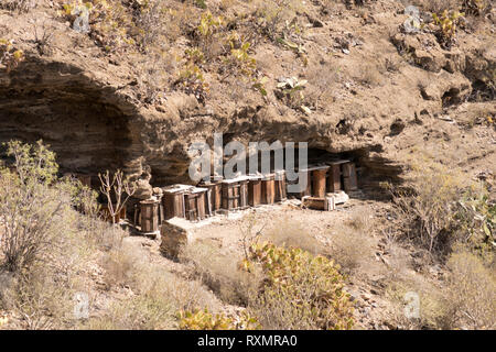 A row of beehives within the Barranco del Infierno, Adeje, Tenerife, - Stock Image