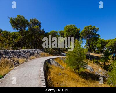 Coastal country-road promenade curving curve - Stock Image