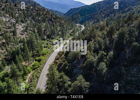 Road bends through a mountain canyon in a southern California forest. - Stock Image