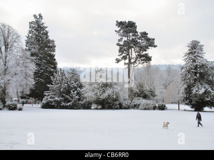 A dog walker in Royal Victoria Park in the snow Bath Somerset England UK - Stock Image