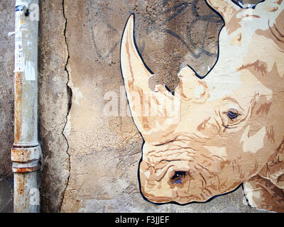 A rhinoceros (white rhino) mural painted on a wall in Arles, France, next to a drainpipe.Grafitti? Steeet art? Vandalism? - Stock Image