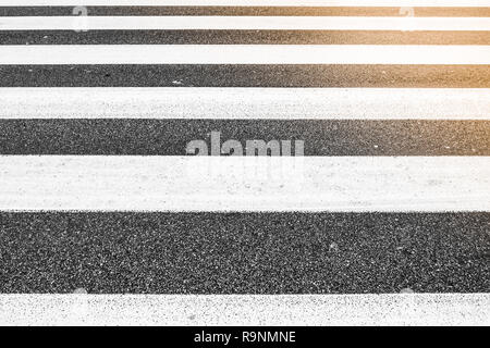parallel lines of crosswalk, asphalt rough pattern, no people, sunlight in one corner - Stock Image