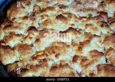 Baked blueberry apple cobbler with biscuit topping - Stock Image